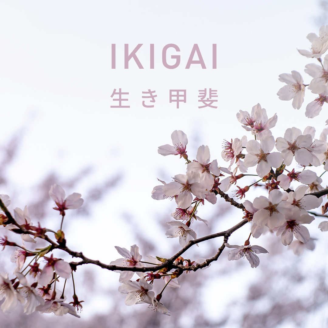 LONG: Ikigai: the Japanese concept